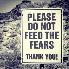 please_do_not_feed_the_fears.jpg