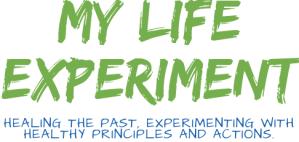 My Life Experiment Logo